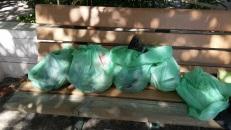 trash garbage litter beach trash