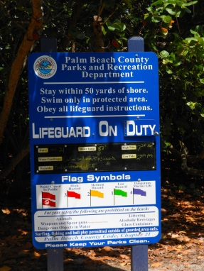 beach lifeguard communications board