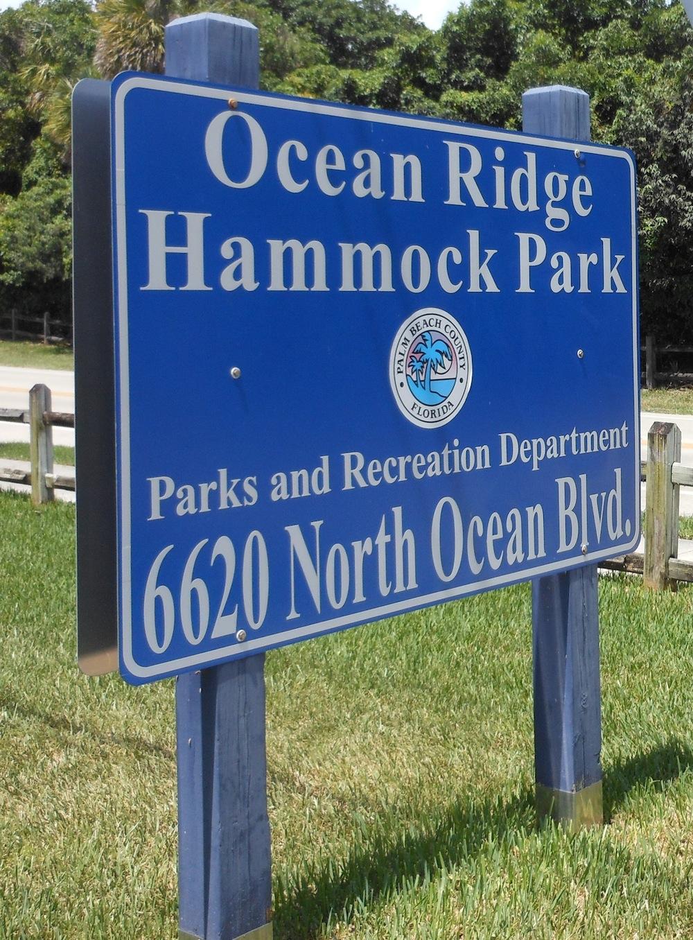 Perfect ... Ocean Ridge Hammock Park
