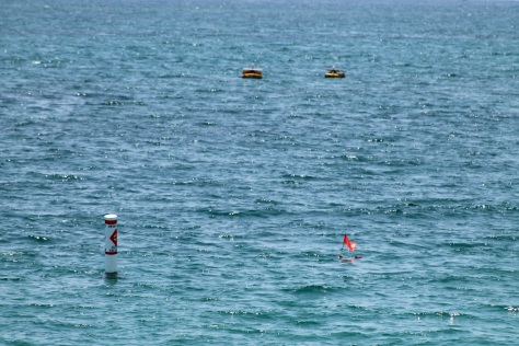The two circular yellow buoys in the distance catch the solar energy to charge the BioRock Reef.