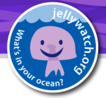 jellywatch jellyfish spotting app
