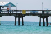 lauderdale by the sea fishing pier