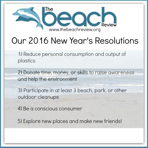 the beach review 2016 new years resolutions environment