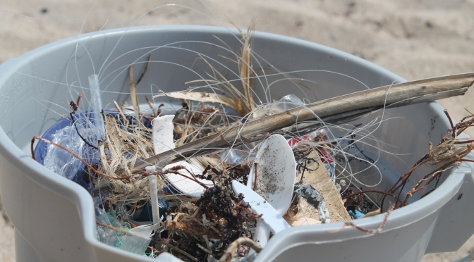 the beach review blog cleanup litter ecoconscious