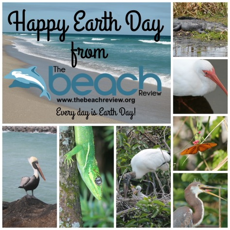 Earth day 2016 the beach review blog