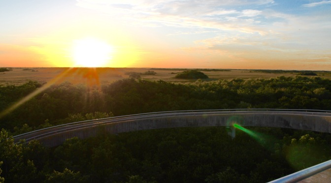 Sunset Bike Ride in Shark Valley, Everglades National Park