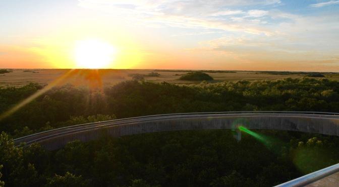 Sunset Bike Ride in Shark Valley, Everglades National Park